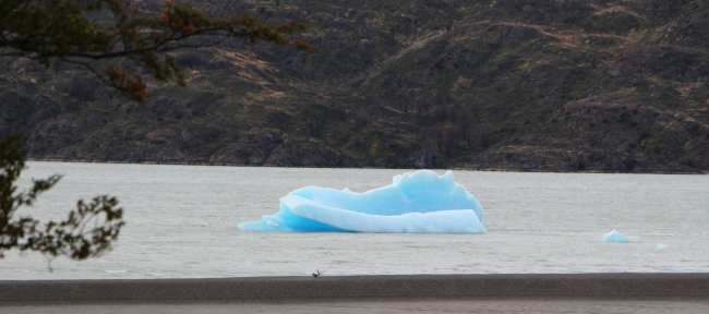 Torres del Paine Patagonia Chilena - Lago Grey