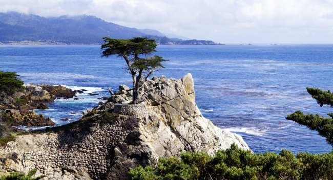 Road trip pela Califórnia de São Francisco a Monterey e Carmel - 16
