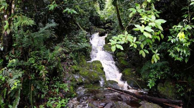 Cataratas de Gocta Amazonas Peru - 24
