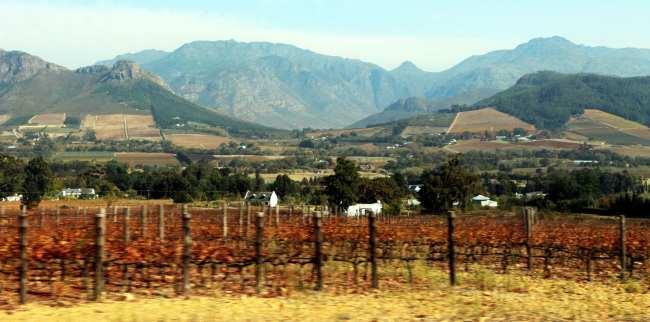 Vinícolas da África do Sul - Franschhoek - 3