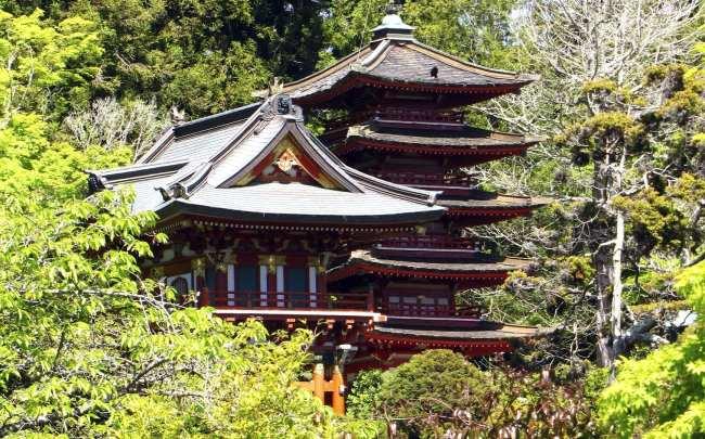 Roteiro por São Francisco - japanese tea garden