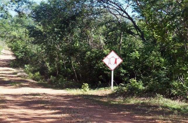 Serra da Capivara no Piauí - 08