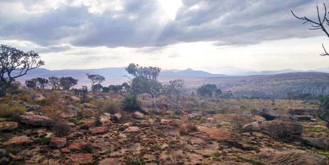 Kruger Park, safári pela África do Sul - 01