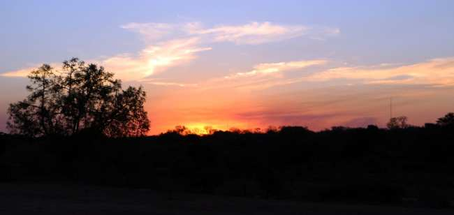 Kruger Park, safári pela África do Sul - 19