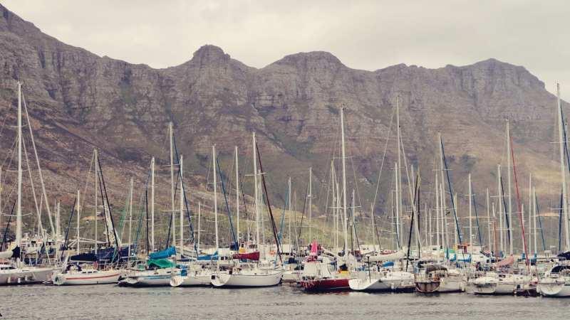 Cidade do Cabo - passeio pelo Cabo da Boa Esperança - 01