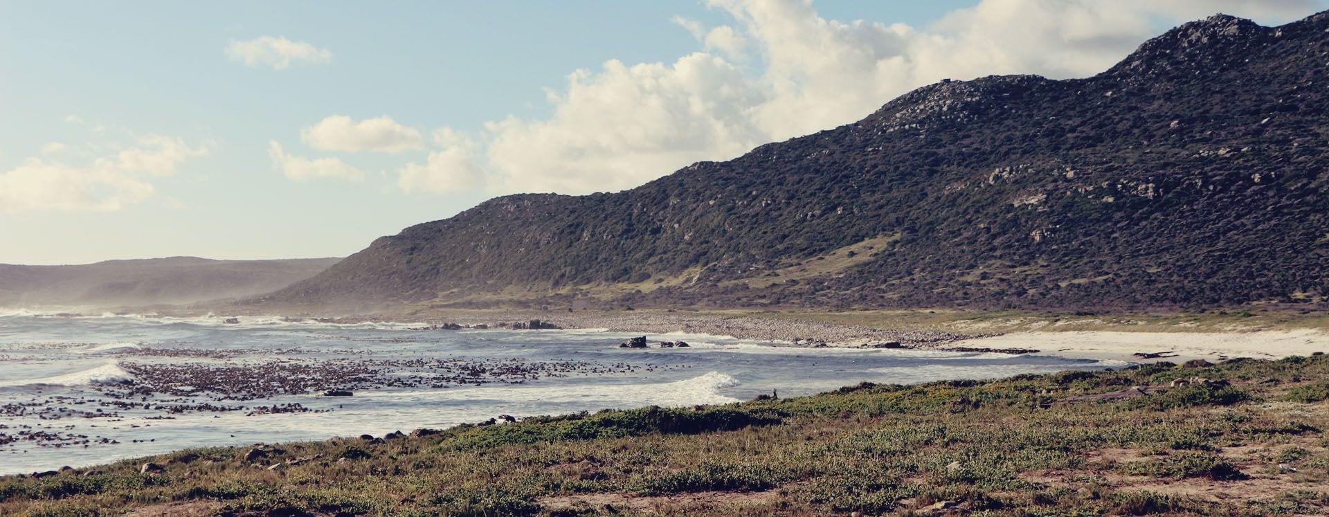 Cidade do Cabo - passeio pelo Cabo da Boa Esperança - 07