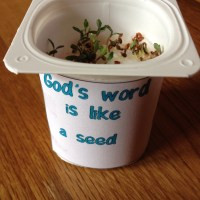 The sower and the seed cress craft