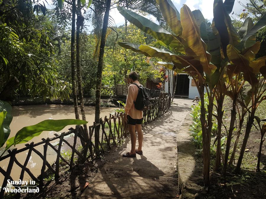 Patrząc na wodę w parku - Karaiby - Sunday In Wonderland Blog