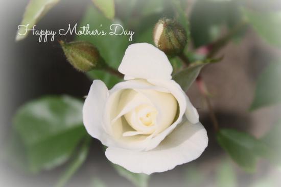 Happy Mother's Day 2014 by Heather Schmitt-Gonzalez