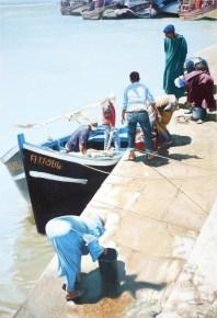Brian Fleming, On the Quayside, Essaouira, Morocco