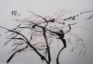 Siu Ying Yvonne Koo, Ying (Cherry blossom)