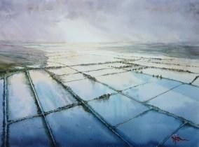 Henry Jones, Somerset in flood