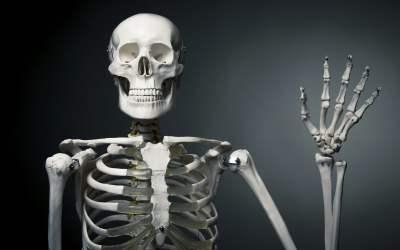 Skeletal Stories