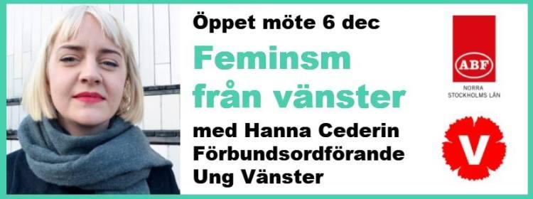 feminism-fran-vanster