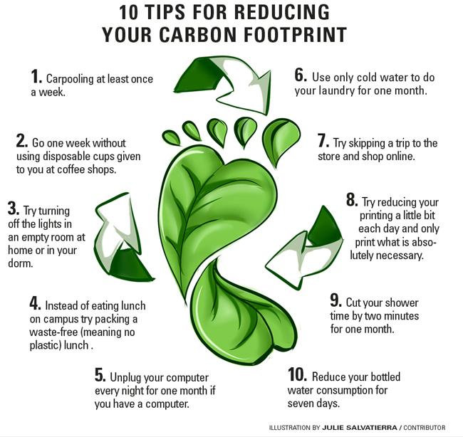 How to reduce your daily carbon footprint | The Sundial