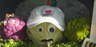 Cabbage pictured in the center of other vegetables with eyes glued on and a hat that says imperfect produce