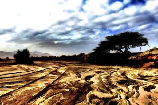 Arabian-desert_Bill-Strain.jpg
