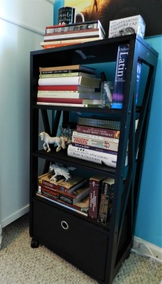 Megan Black Bookcase