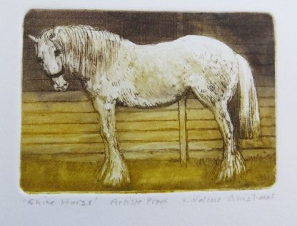 Shire Horse Etching by Valerie Christmas