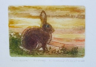 Rabbit Etching by Valerie Christmas