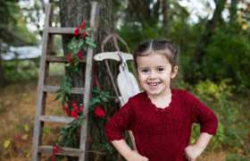 Hayden Holiday Mini