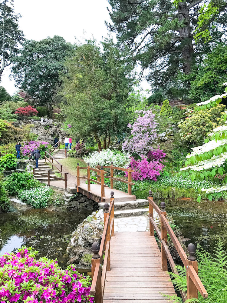 Powerscourt Gardens in Wicklow Ireland, Travel Blogger Jaime Cittadino of Sunflowers and Stilettos blog