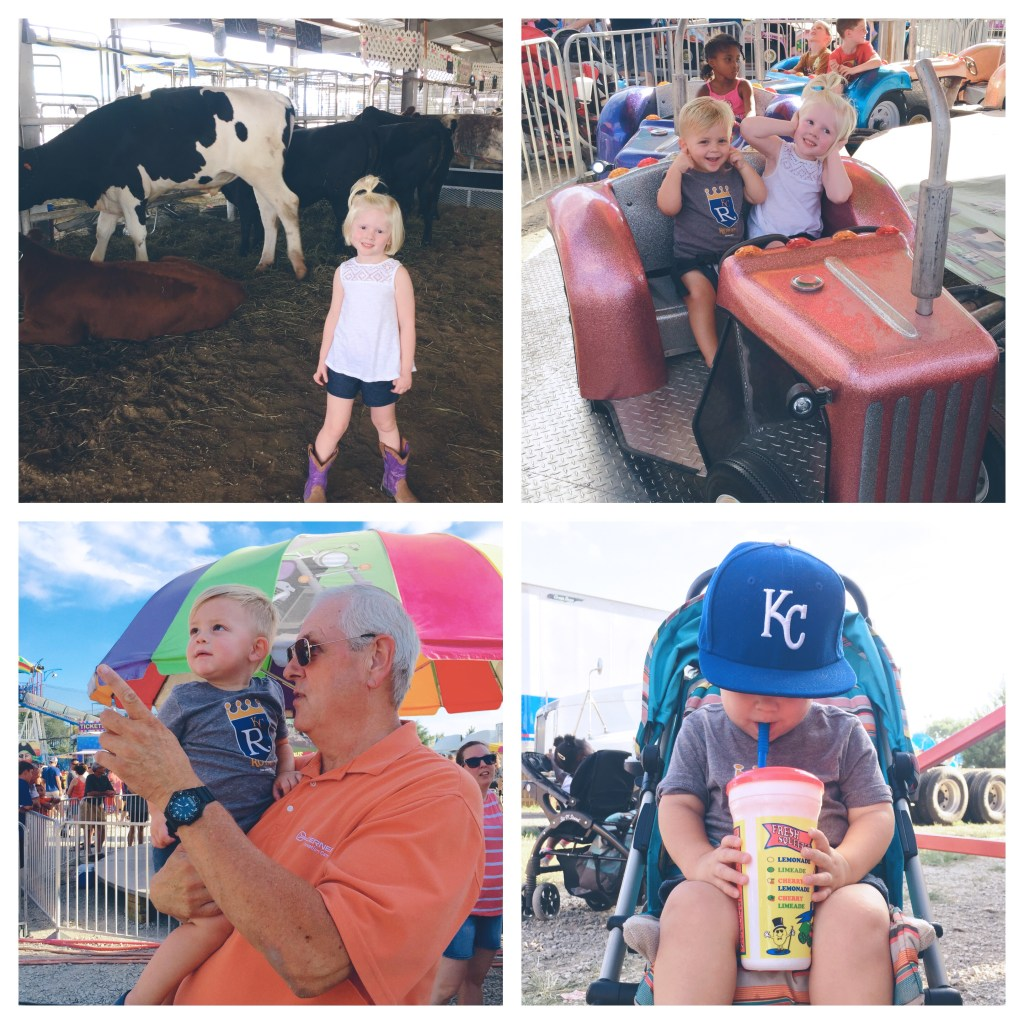 johnson county fair 2016