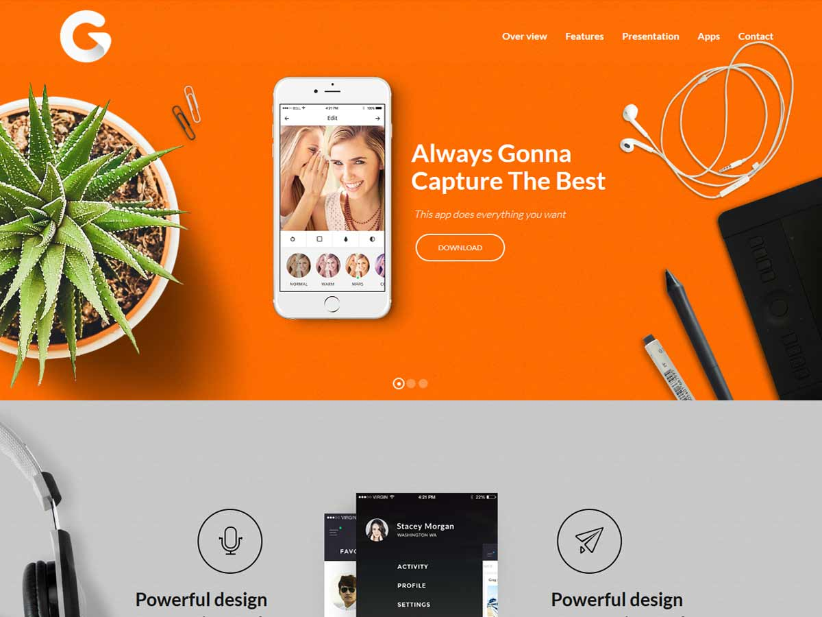 Massive Dynamic - WordPress Website Builder Theme