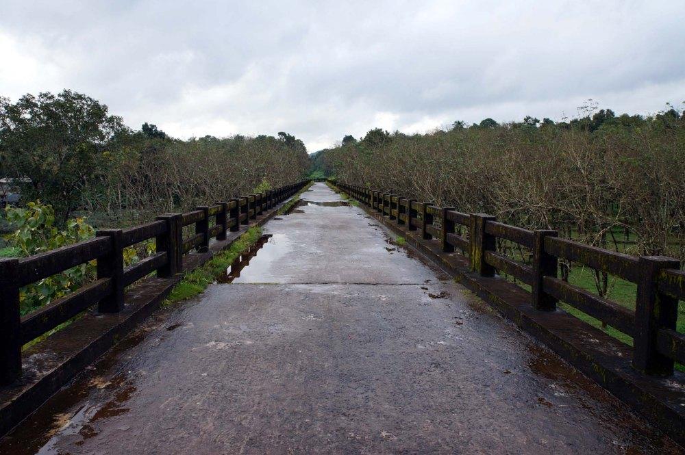 The Bridge to Bliss (1/2)
