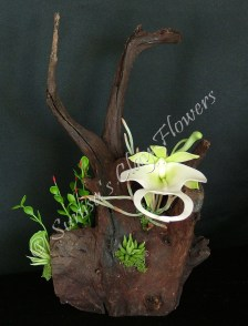 (SOLD OUT) Ghost Orchid #01, 11 x 6 inches, $65