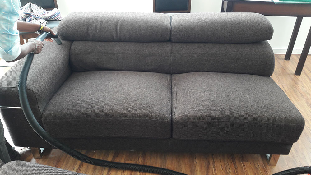 sofa cleaning services in chennai dog bed extra large sunjeevan healthy home best cleaner service dust mites bacteria food residue and other micro organisms can be found on the mattress which needs deep many times