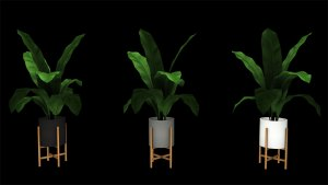 Potted Floor Plant, high quality sims 4 cc, sunkissedlilacs, free sims 4 furniture, sims 4 custom content,