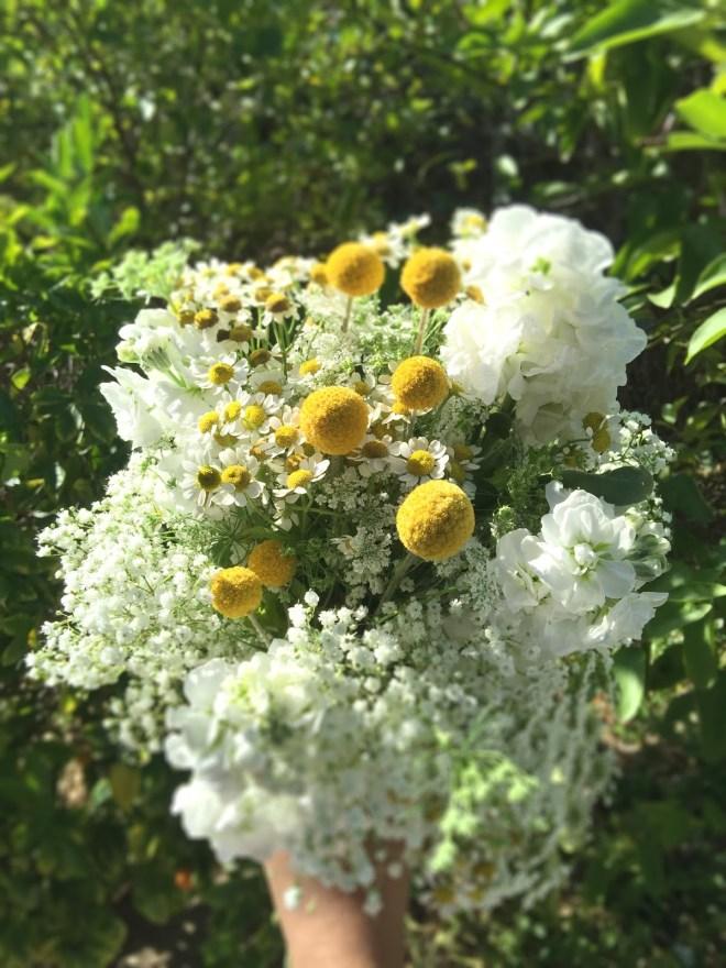 27c50-bouquet2bblur