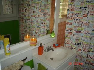 g. our bathroom (3)