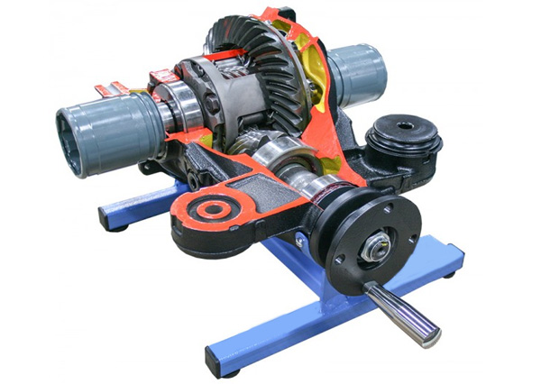 Working Model Of Torsion Differential