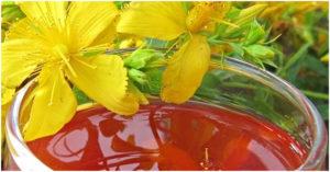 kantarion, ulje kantariona, hipericin, Hypericum perforatum kantarion, ulje kantariona, hipericin, hypericum perforatum Kantarion i ulje kantariona ulje kantariona  za lice 300x157