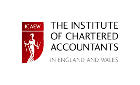 Dafinone appointed Africa Members Advisory Board chair by ICAEW