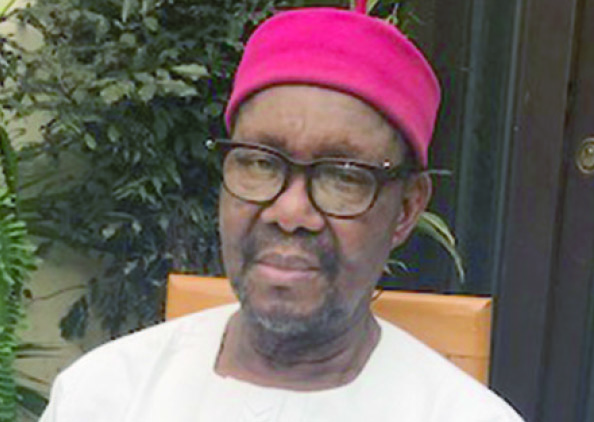 Nigeria isn't working, let's break it – Prof. Nwala, ADF President