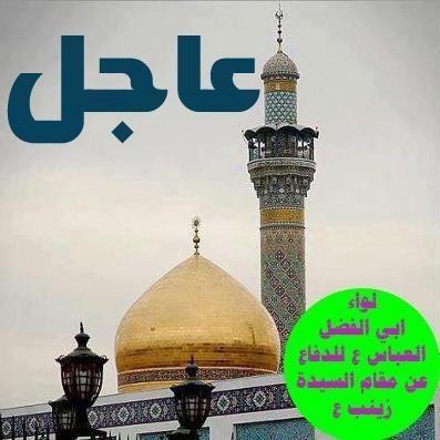 السیدة زینب بحمایة أبی الفضل علیهما السلام