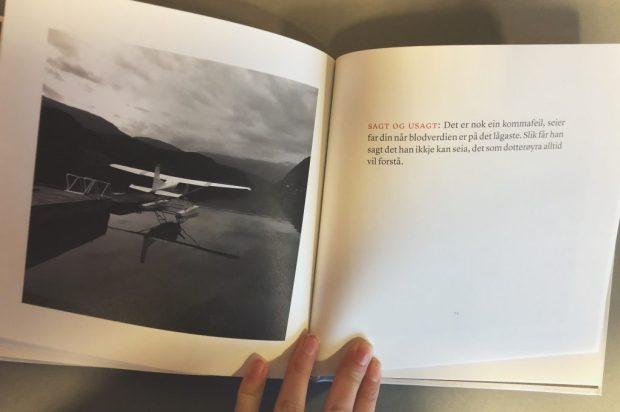 """Eit av oppslaga i diktsamlinga """"Det står til liv"""" med bilde og tekst"""