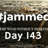 The Flower Pot (#jammed daily devo, day 143)
