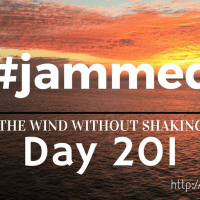 The Dogfights (#jammed daily devo, day 201)