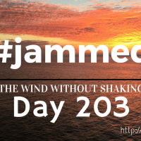 The Thrifty Compliments (#jammed daily devo, day 203)
