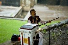 Parra Sydney Festival opening night musician in action