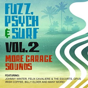 Various - Fuzz, Psych & Surf, Vol. 2 - More Garage Sounds 60's Psychedelic Rock Music Album Compilation