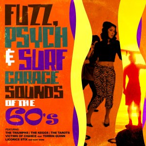 va - fuzz, psych & surf - garage sounds of the 60's [2013]