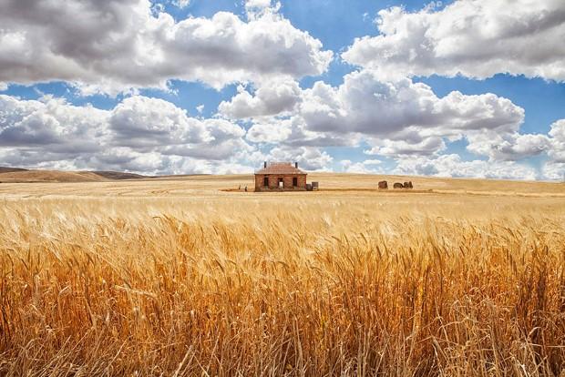σπίτια στη μέση της φύσης21