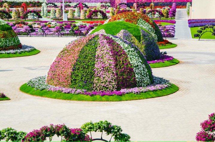 Marvelous-Dubai-Miracle-Garden,