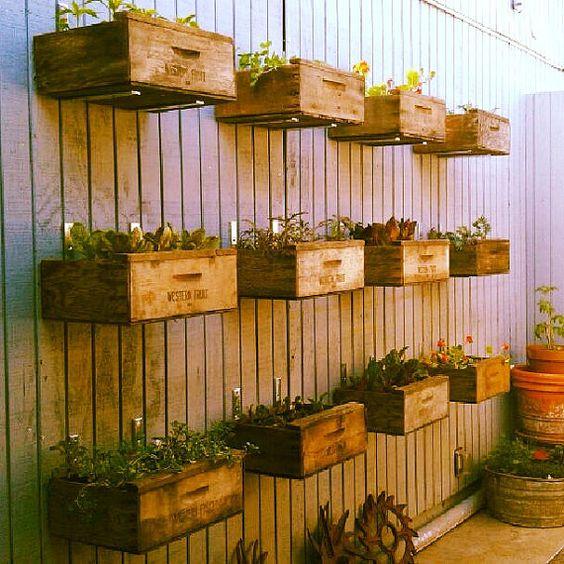 ιδέες διακόσμησης κάθετων επιφανειών με φυτά3