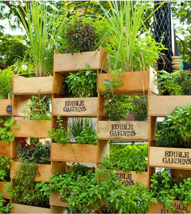 κάθετες ιδέες κηπουρικής14